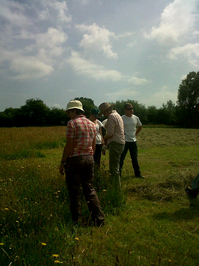Members of the Dyfed Smallholders Association identifying flowers in the uncut grass.