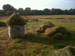 Piles of hay ready for stuffing into the dumpy sack