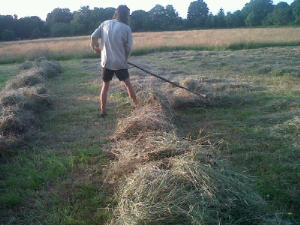 Rowing up with a hayrake