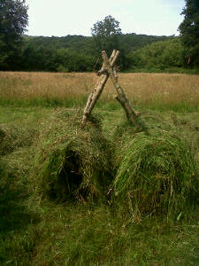 The first layer of hay is laid over the bottom rail